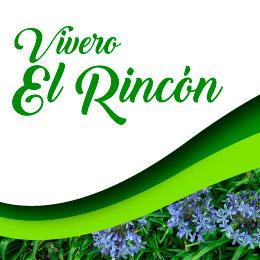 Vivero El Rincón